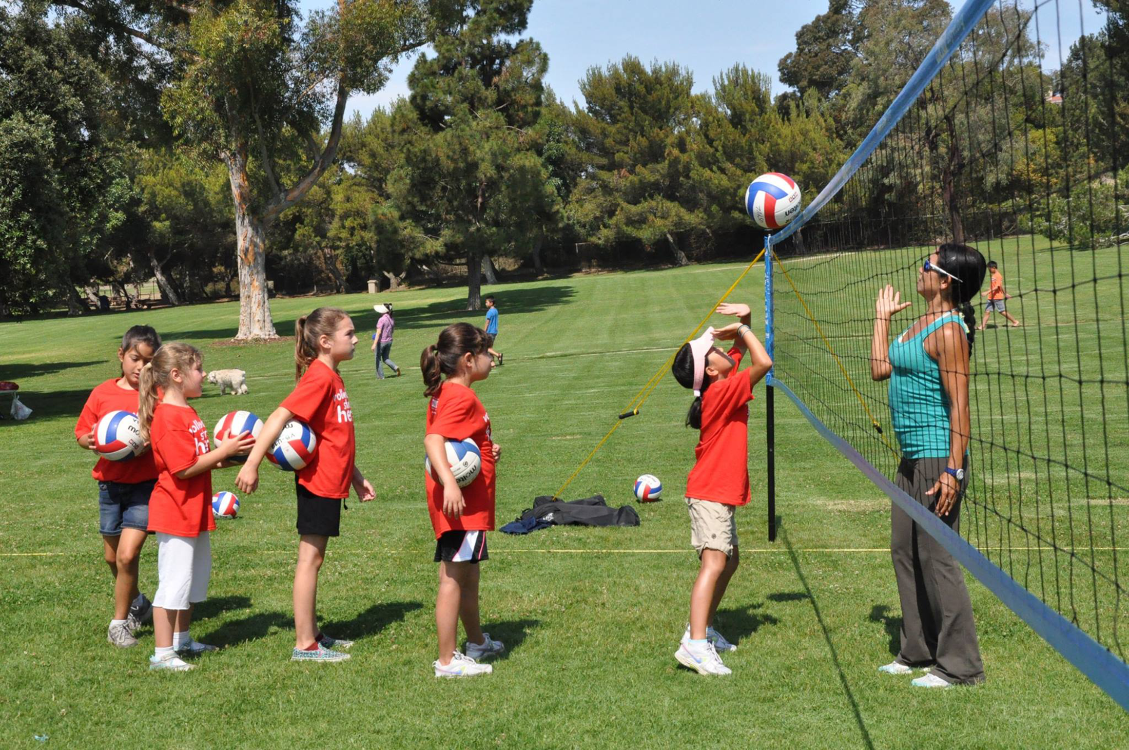 Ps Usyvl Portable Usyvl Youth Volleyball Grass Net
