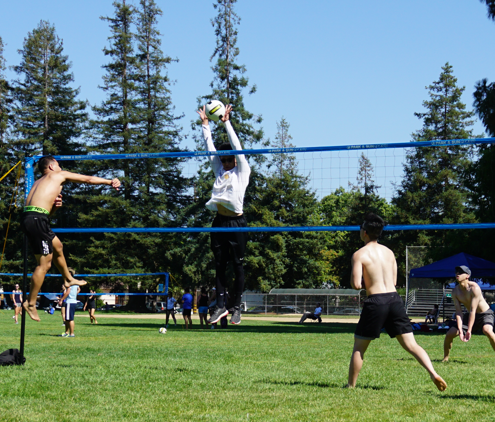 Park and Sports Blue Spectrum Classic Grass Volleyball Action Shot The League Sports San Francisco
