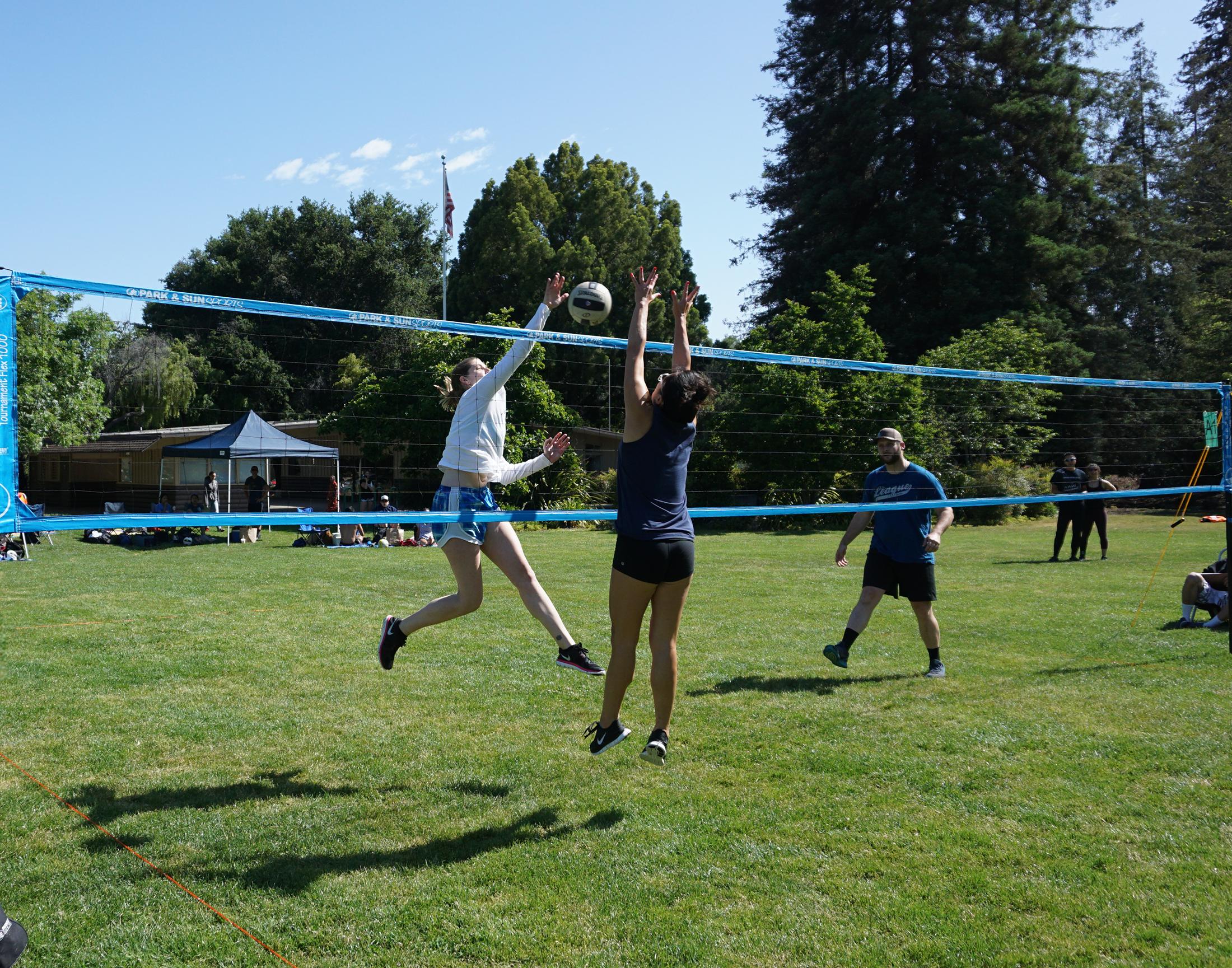 Ts Flex 1000 Tournament Flex 1000 Outdoor Volleyball Net