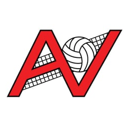 Ts Cl Spectrum Classic Professional Outdoor Volleyball