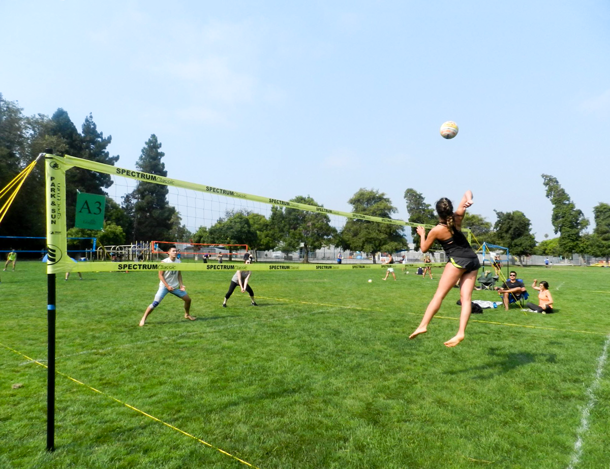 Reverse Coed grass volleyball - Yellow Spectrum Classic Net Systems
