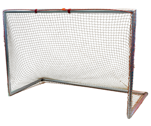 Park and Sun Sports - Whiptail Aluminum Sports Goal